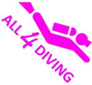 Logo All4D
